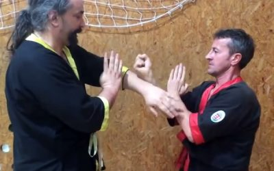 Videóajánló – Wing Tsun / Power and Beauty